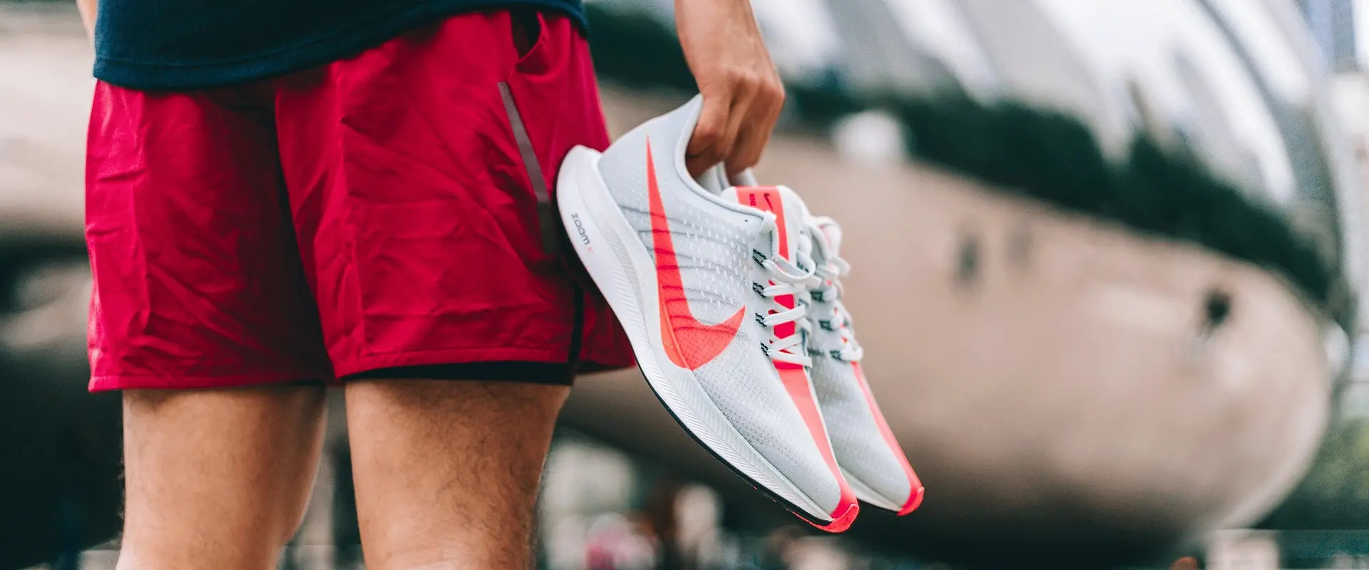 Versions of Air Zoom Pegasus 35