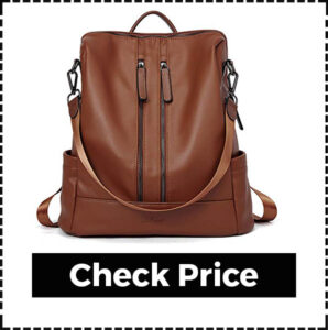Best Business Travel Backpack for Women